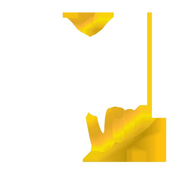 Kardinal Stick VIP